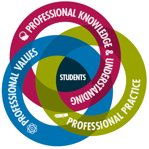 New Professional Standards For College Lecturers Launched